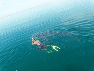 Espíritu & Baja Snorkel