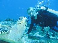 Observacion fauna subacuatica