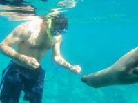 Nadar con snorkel y el lobo marino.JPG