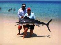 Pesca de pez vela