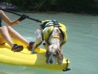 Kayakeando con amigos