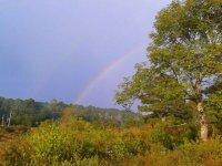 arcoriris