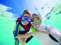 Discover marine life