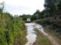 caminos salvajes