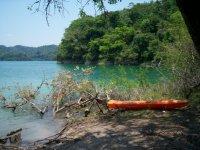 Kayaks en la selva