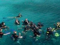 Snorkeling group at sea