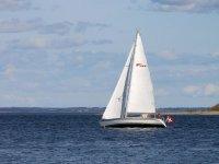 Wind-driven boat