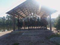 Horseback riding in full sun