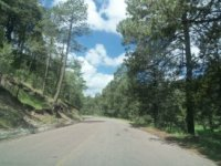 Asphalted roads