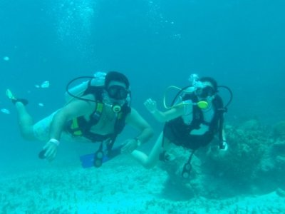 EcoDiving Tours Buceo
