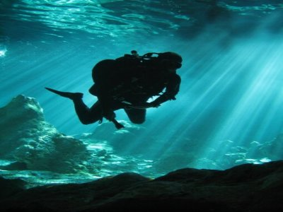EcoDiving Tours