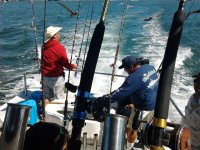 Fishing day with Tours in Baja