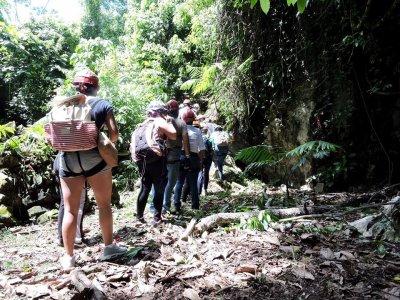 Jungla Experience Caminata