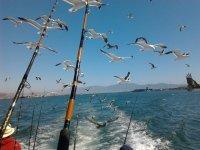 Enjoy these beautiful landscapes while you go fishing