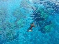 Swim with your snorkel