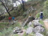 interpretive hiking