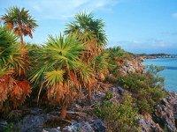 Caminatas por la isla