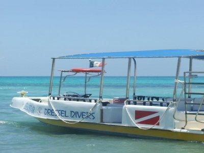 Dressel Divers Buceo
