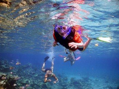 Dressel Divers Snorkel