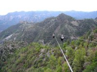 Descend the forest in zip lines