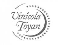 Vinícola Toyán