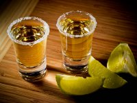 Tequila tours