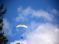 Different paragliding designs