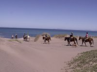 playa y montana