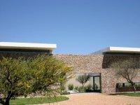 Vineyards gallery