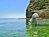 Pesca en panga