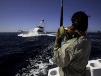 Pesca en el mar de Cortez
