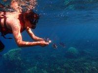 Fun under the sea