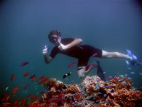 Snorkeling and corals