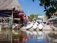 Rental of kayaks in Yucatan