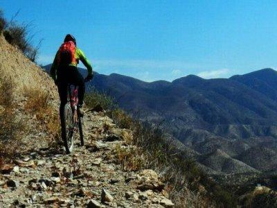 Dardo 4 Ciclismo de Montaña