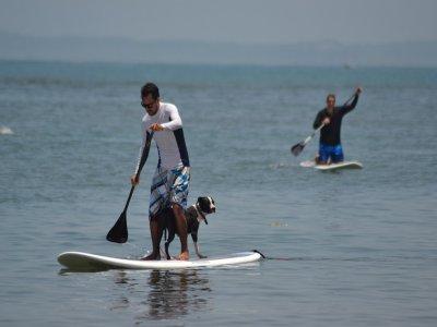 Mango Canopy Tour Paddle Surf