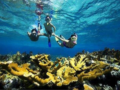 Isla Mujeres Trips Snorkel