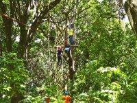 Cruza la selva