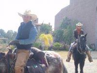 Galloping in SMA