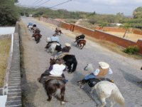 Excursion on horseback