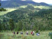 Caminata media montaña