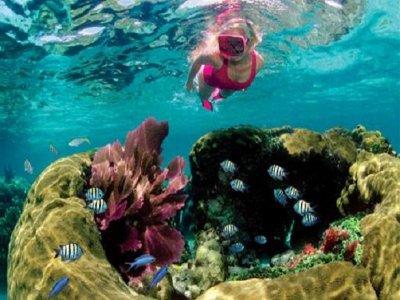 Cancún Sailing Catamarans Snorkel