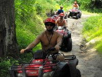 Wild expedition