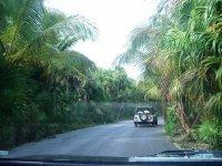 Paseos en Jeep