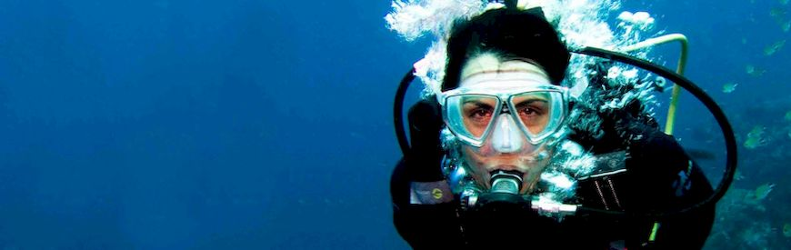 Offers of PADI Open Water Diver   Baja California