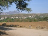 El Paxtle Guanajuato